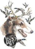 Den ryska vinthunden, designer för jägarehundkapplöpningkortet, den redigerbara logoen, kan du skriva in din logo eller text Arkivfoto