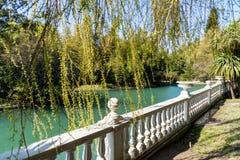 Den Ryssland staden av det Sochi Adler området parkerar sydliga kulturer Damm med reflexion av träd royaltyfri fotografi
