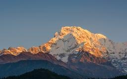 Den södra Annapurnaen royaltyfria bilder