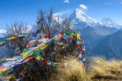 Den södra Annapurnaen, Nepal royaltyfri foto