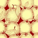 Den sömlösa modellen av handen drog apelsiner och skivor skissar in stil också vektor för coreldrawillustration Arkivbilder