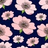 Den sömlösa modellen av den rosa blomningen av hunden steg på mörker - blått Rosa höftillustration stock illustrationer
