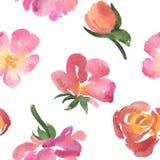 Den sömlösa modellen av den rosa vattenfärgen steg blommor Arkivfoton