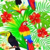 Den sömlösa modellen av den tropiska fågeln lämnar och blommar Royaltyfria Foton