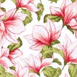 Den sömlösa modellen med magnolian blommar på den vita bakgrunden Blommar den tropiska blomstra rosa färgen för ny sommar för tyg Royaltyfria Foton