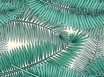 Den sömlösa modellen med palmblad skissar in stil Royaltyfria Bilder