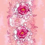 Den sömlösa modellen med pionblomman i rosa färger och sidor på tappningen texturerade bakgrund Blom- bakgrund i konturstil Arkivbild