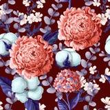 Den sömlösa modellen med pionen, vanliga hortensior, bomull blommar, och eukalyptuns förgrena sig också vektor för coreldrawillus stock illustrationer