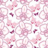 Den sömlösa modellen med rosa färger prack malorkidén eller Phalaenopsis och utsmyckade fjärilar på den vita bakgrunden Royaltyfri Foto