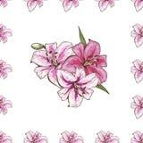 Den sömlösa modellen med rosa liljor blommar på vit bakgrund Vektoruppsättning av att blomma som är blom- för att gifta sig inbju royaltyfri illustrationer