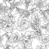 Den sömlösa modellen med vallmo blommar i botanisk tappningstil Arkivbild