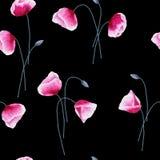 Den sömlösa modellen med vattenfärgvallmo blommar och slår ut på svart Arkivfoto