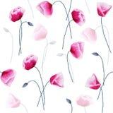 Den sömlösa modellen med vattenfärgvallmo blommar och slår ut på vit Royaltyfri Fotografi