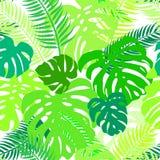 Den sömlösa vektormodellen av grönska lämnar monstera och gömma i handflatan Exotisk tropisk repetitionprydnad royaltyfri illustrationer