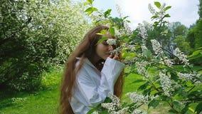 Den söta europeiska flickan sniffar en blommande hägg, en ultrarapid En kvinna med långt frodigt hår som in tycker om naturen arkivfilmer