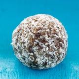 Den söta indiska rå foodismbollen Arkivfoto