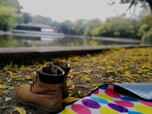 Den söta och kyliga viben av Oktober royaltyfria foton