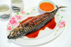 Den Saba fisken grillade plattan på vit bakgrund arkivfoto