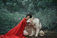 Den sagolika bilden, attraktiv dam för mörker-haired brunett i kort vit klänning, den långa röda scharlakansröda kappan som ligge fotografering för bildbyråer