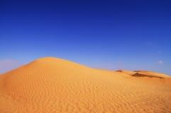 Den sahara öknen Arkivfoto