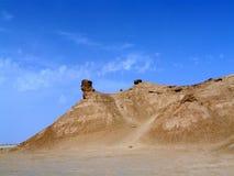 Den Sahara öknen, Tunisien, hals för kamel` s vaggar royaltyfria bilder