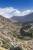Den sakrala dalen skördade vetefältet i den Urubamba dalen i Peru, Royaltyfri Fotografi