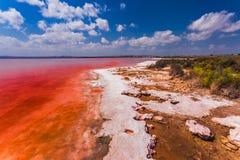 Den salt kusten av Lagunaen Salada de Torrevieja spain royaltyfri fotografi