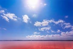 Den salt kusten av Lagunaen Salada de Torrevieja spain arkivbild
