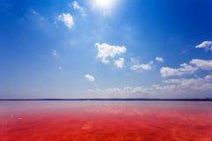 Den salt kusten av Lagunaen Salada de Torrevieja spain royaltyfri bild