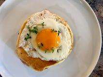 Den saltade pannkakasmörgåsen med Fried Eggs, frasig bacon och timjan lämnar/den salta organiska frukosten royaltyfri foto