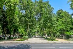 Den Samarkand universitetboulevarden parkerar 05 arkivfoton