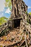 Den Sambor Prei Kuk templet fördärvar, Cambodja Fotografering för Bildbyråer