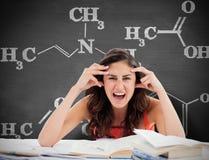 Den sammansatta bilden av studenten går galen göra hennes läxa Fotografering för Bildbyråer
