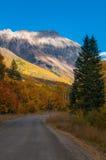 Den San Joaquin Ridge nedgången färgar Colorado Autumn Landscape Arkivbild