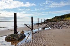 Den sandiga stranden med en fodra av postar. Royaltyfria Bilder