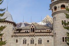 Den Savoia slotten och snö täckte maximumet i Gressoney Royaltyfria Bilder