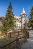 Den Savoia slotten och snö täckte maximumet i Gressoney Royaltyfri Bild