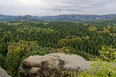 Den saxiska Schweiz Arkivfoton