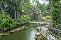 Den sceniska sikten av Kuala Lumpur Bird Park, är det också välkänt som det största Fri-flyget för `-världs` s Gå-i aviarium`, Royaltyfri Bild