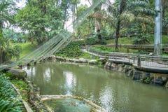 Den sceniska sikten av Kuala Lumpur Bird Park, är det också välkänt som det största Fri-flyget för `-världs` s Gå-i aviarium`, Royaltyfria Bilder