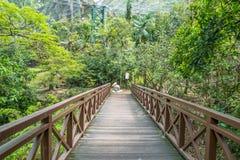 Den sceniska sikten av Kuala Lumpur Bird Park, är det också välkänt som det största Fri-flyget för `-världs` s Gå-i aviarium`, Arkivfoton