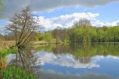 Den Schwalm-Nette naturen parkerar, Nettetal, Tyskland arkivfoto