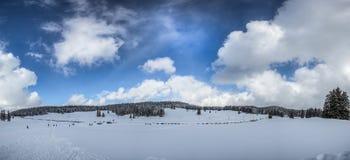 Den schweiziska Jura vintern landskap III Royaltyfria Foton