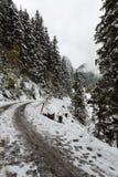 Den schweiziska vägen Arkivfoto