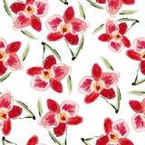 Orchids royaltyfri illustrationer