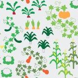 Den Seamless grönsakträdgården mönstrar Royaltyfria Bilder