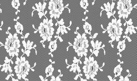 Den Seamless vektorsvarten snör åt Royaltyfri Fotografi