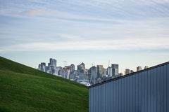 Den Seattle horisontsikten från parkerar royaltyfri fotografi