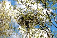 Den Seattle utrymmevisaren som ses till och med träd royaltyfria foton