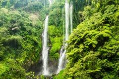 Den Sekumpul vattenfallet i Bali omgav vid den tropiska skogen Royaltyfri Fotografi